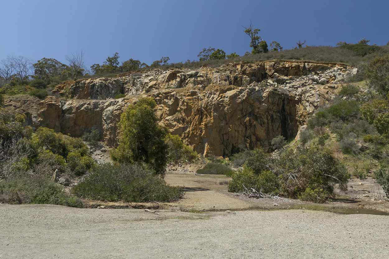 Quarry Wall, Ellis Brook Valley Reserve, Perth, Western Australia