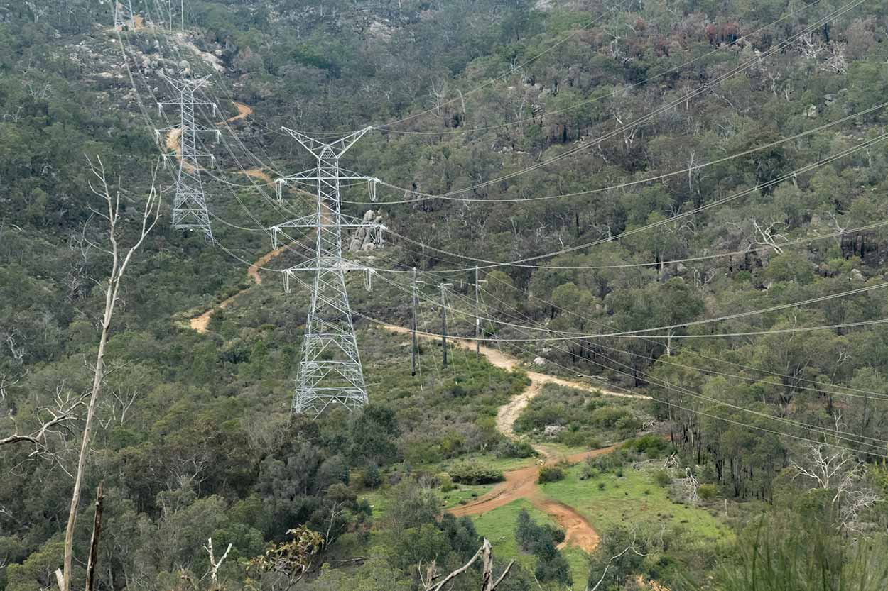 Powerlines over Beelu National Park, Perth, Western Australia
