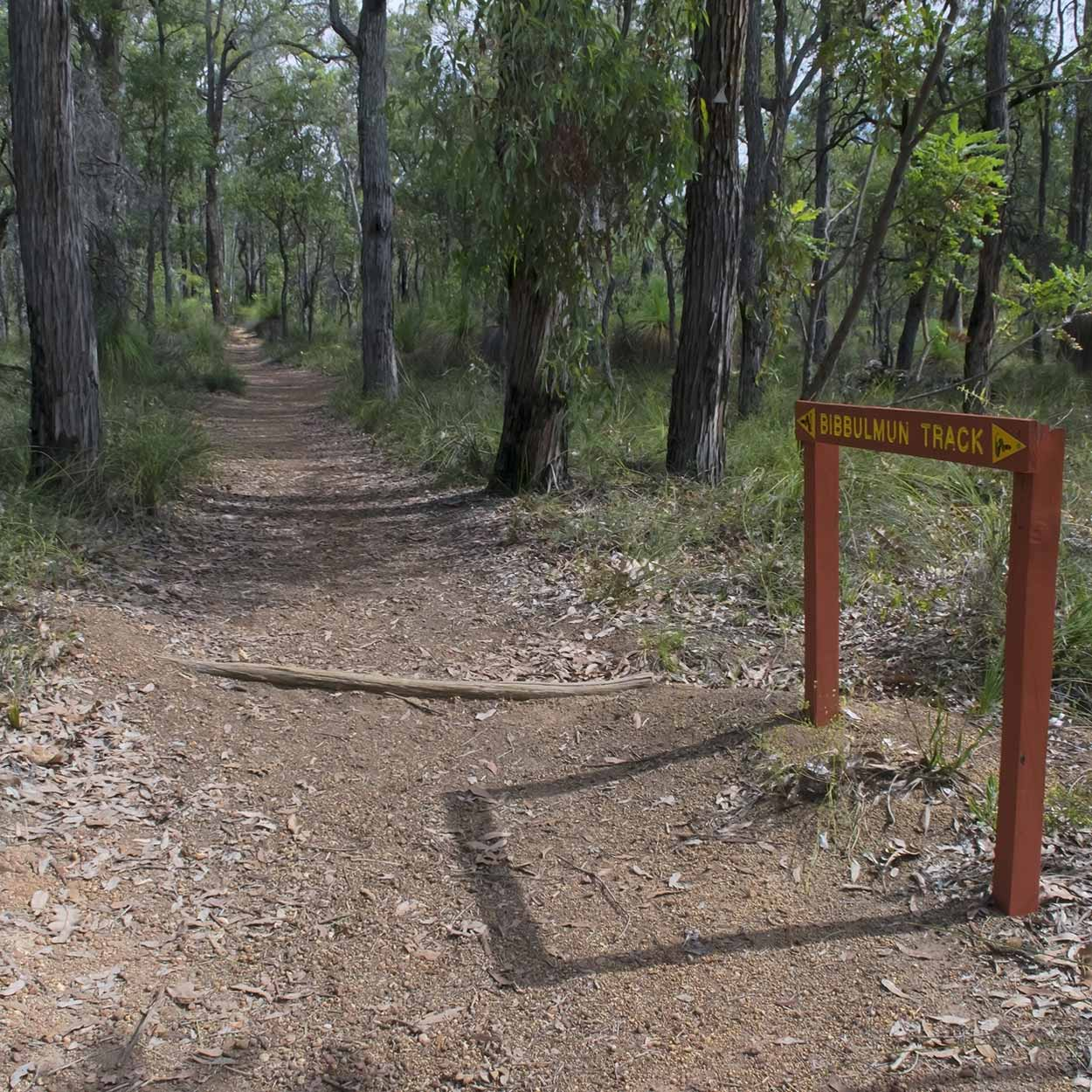 Hiking the Bibbulmun Track, Perth, Western Australia