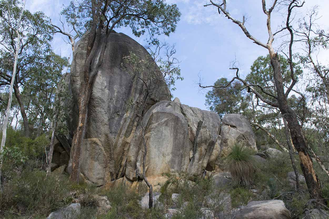 Hiking the Bibbulmun Track through Kalamunda National Park, Perth, Western Australia