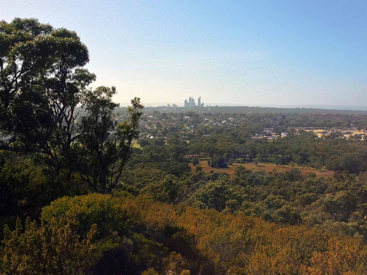 The view towards the city from Reabold Hill lookout, Bold Park, Perth, Western Australia