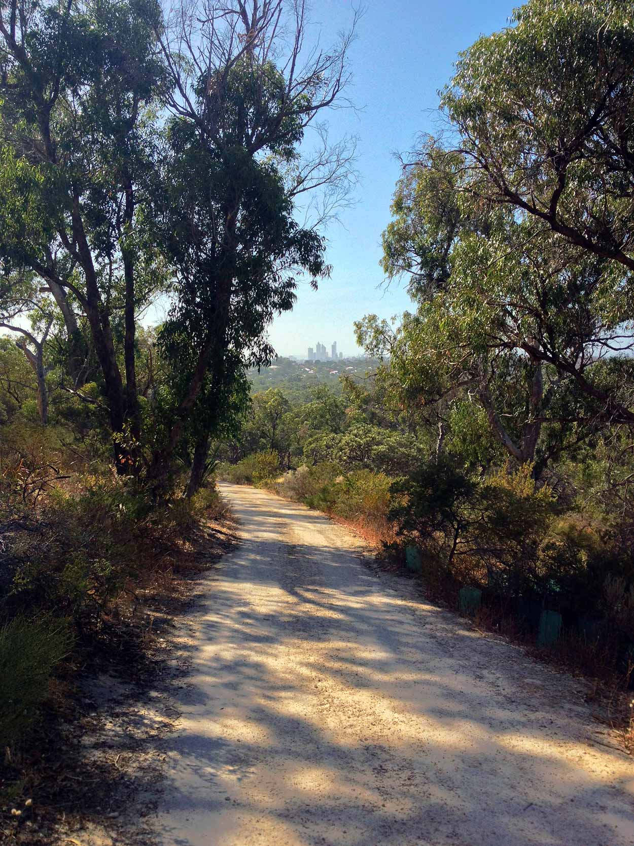 Heading down the Camel Lake Trail, Bold Park, Perth, Western Australia