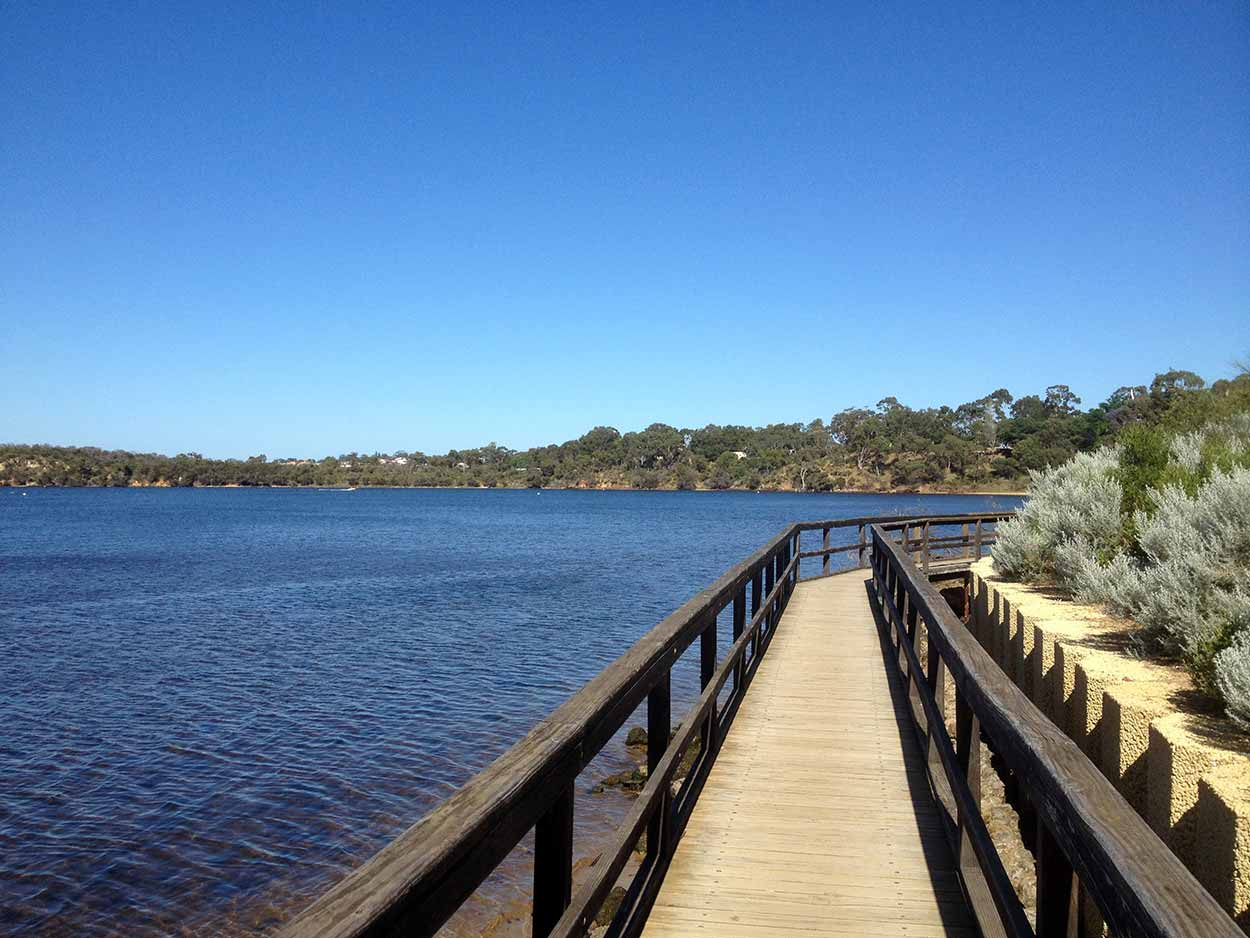 The boardwalk to nowhere along the Canning River on Salter Point, Perth, Western Australia