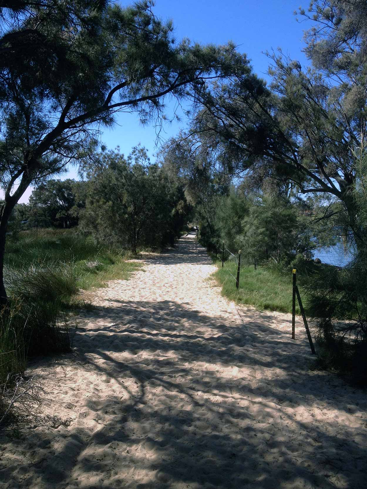 Wetland Reserve at the eastern end of Salter Point Parade, Canning River, Perth, Western Australia