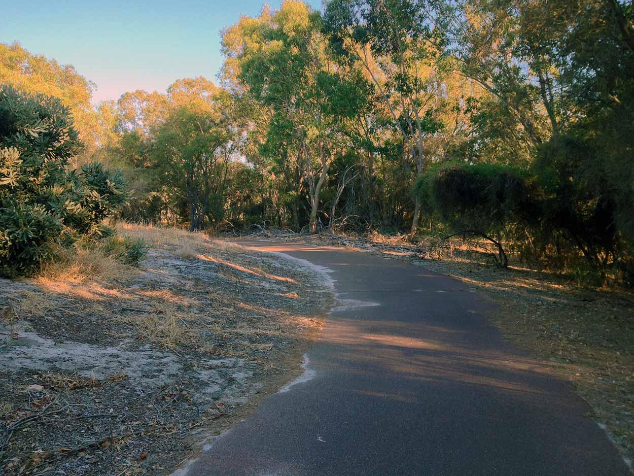 Walking amid the bushland of Yangan Park on Bull Creek, Canning River, Perth, Western Australia
