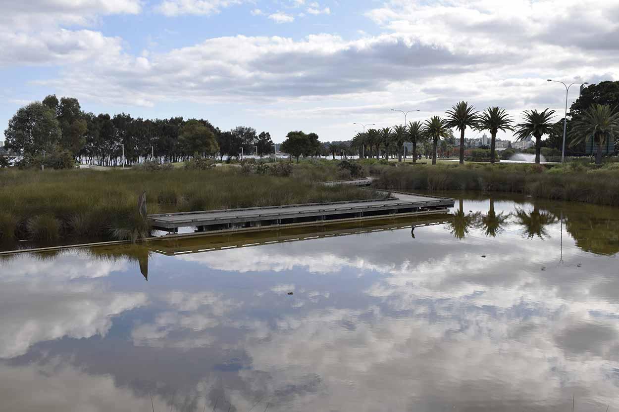 Point Fraser Wetlands, Perth, Western Australia
