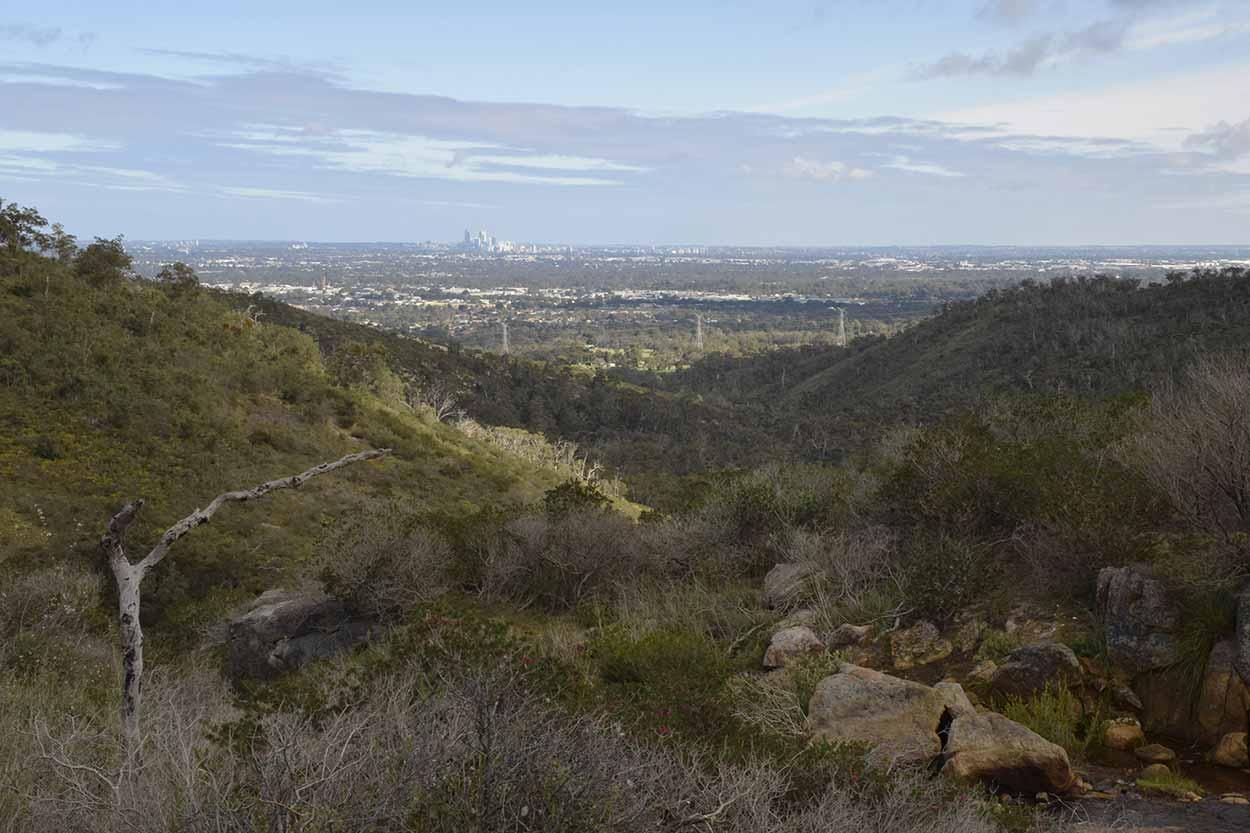Views over the Swan Coastal Plain, Ellis Brook Valley Reserve, Perth, Western Australia
