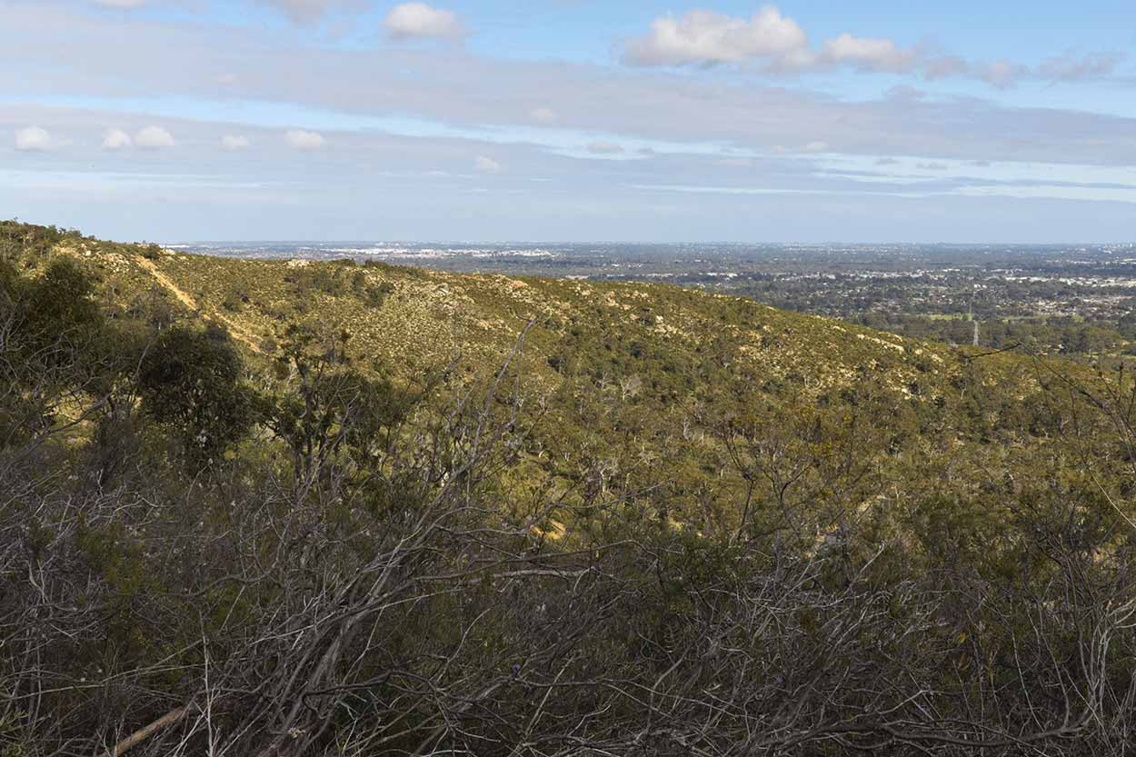 Views from the top of Sixty Foot Falls, Ellis Brook Valley Reserve, Perth, Western Australia