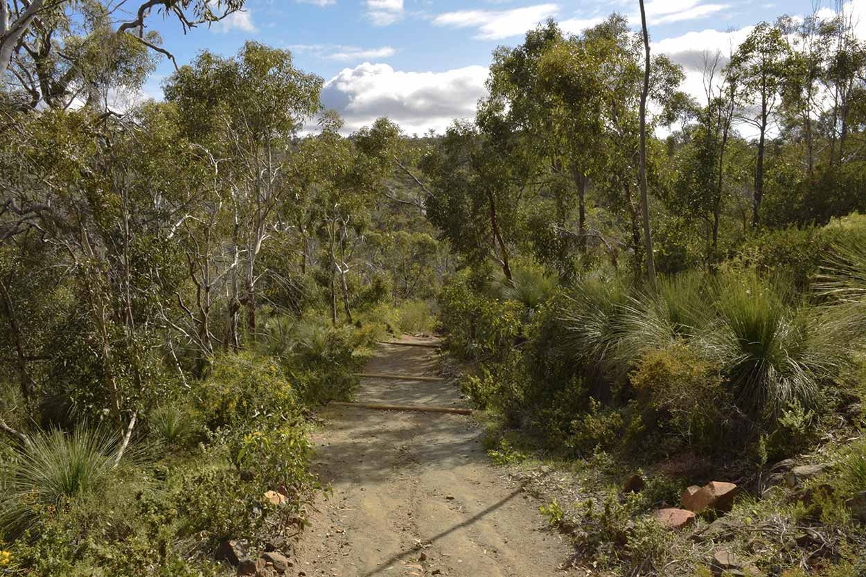Walking along the Sixty Foot Falls Trail, Ellis Brook Valley Reserve, Perth, Western Australia