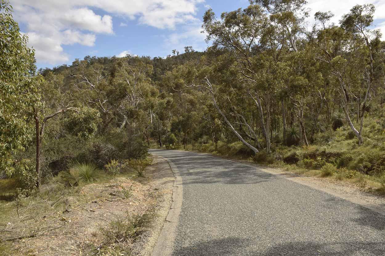 Walking along Rushton Road, Ellis Brook Valley Reserve, Perth, Western Australia