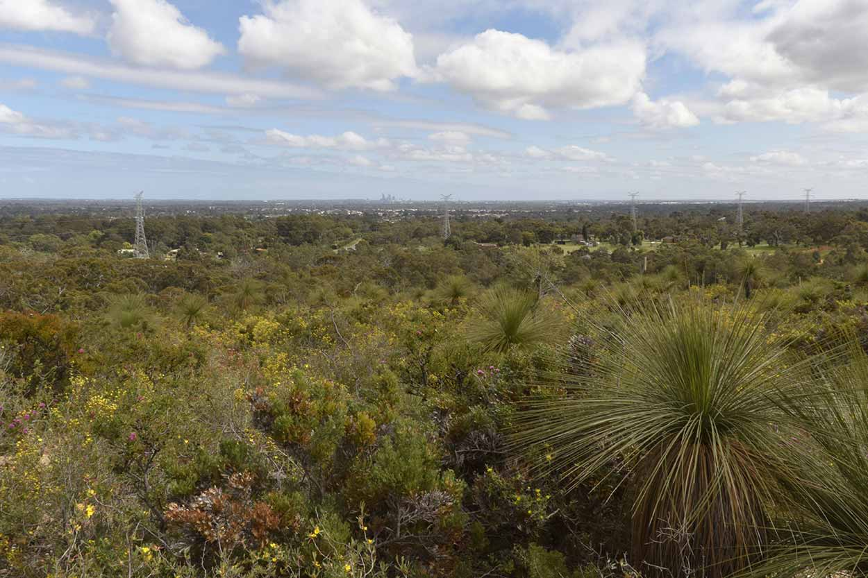 Views from the Eagle Trail, Ellis Brook Valley Reserve, Perth, Western Australia