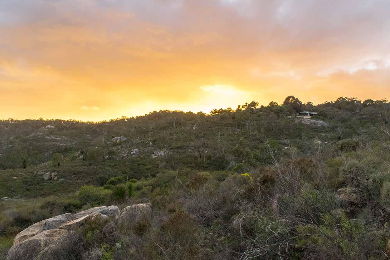 Sunrise over bushland, Gooseberry Hill, Perth, Western Australia