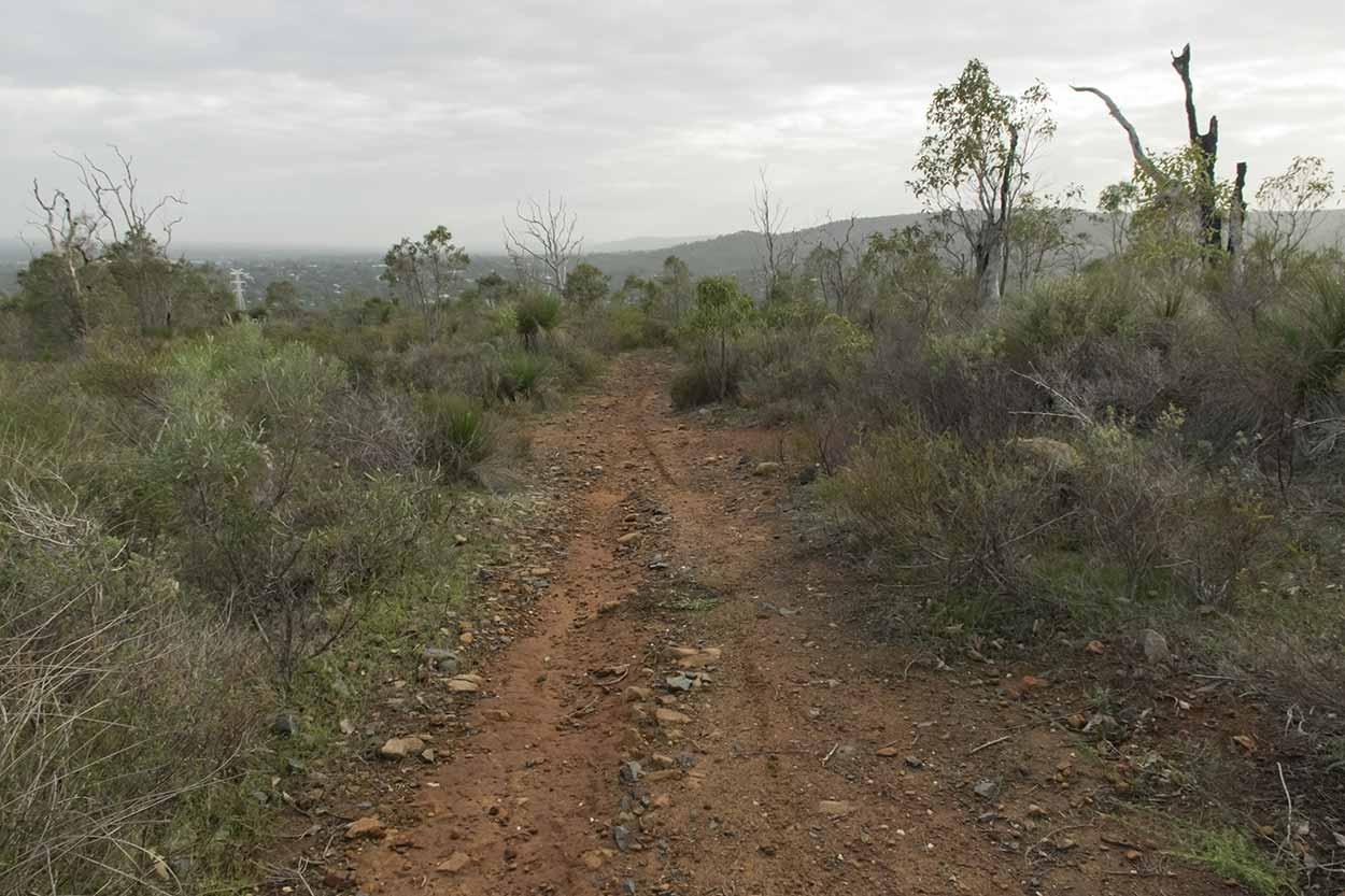 A bushland track, Gooseberry Hill, Perth, Western Australia