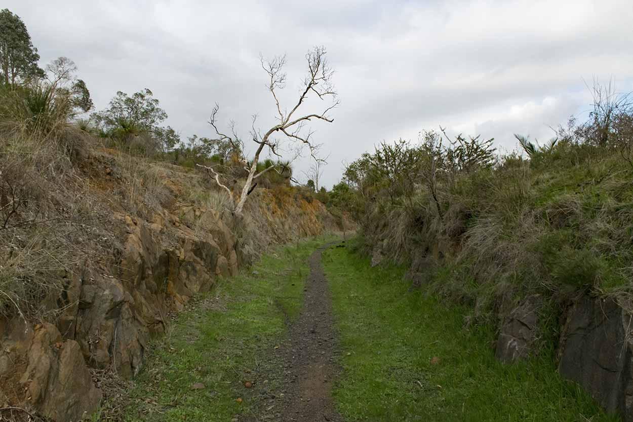 Hiking in the bushland, Gooseberry Hill, Perth, Western Australia