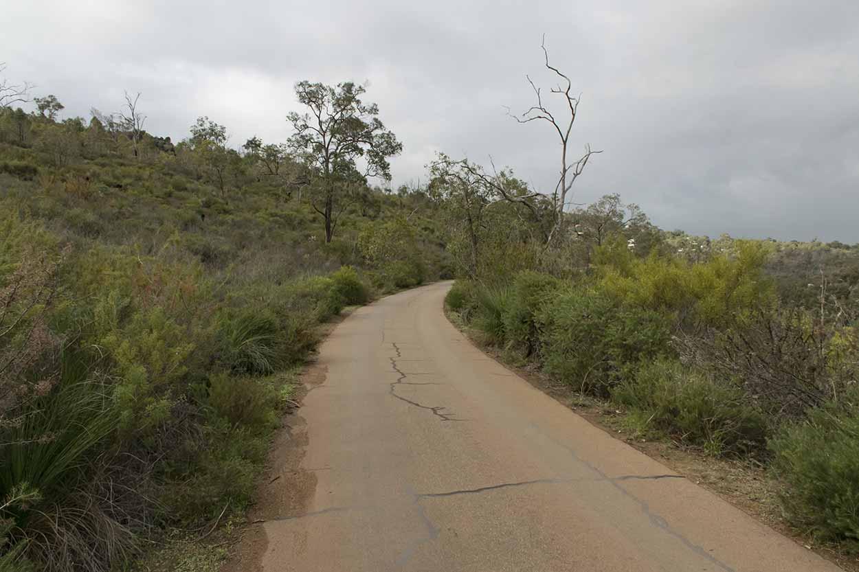 Walking on the Zig Zag Scenic Drive, Gooseberry Hill, Perth, Western Australia