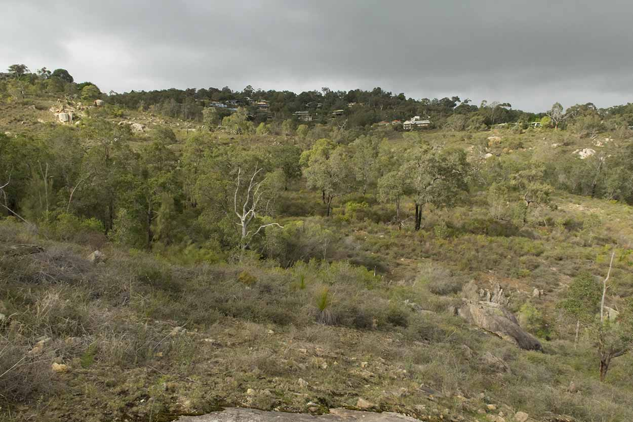 Bushland, Gooseberry Hill, Perth, Western Australia