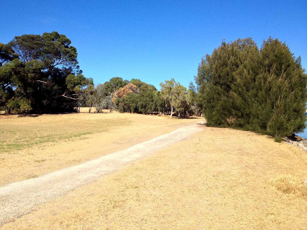 The path amongst the dry summer grass of Heirisson Island, Perth, Western Australia