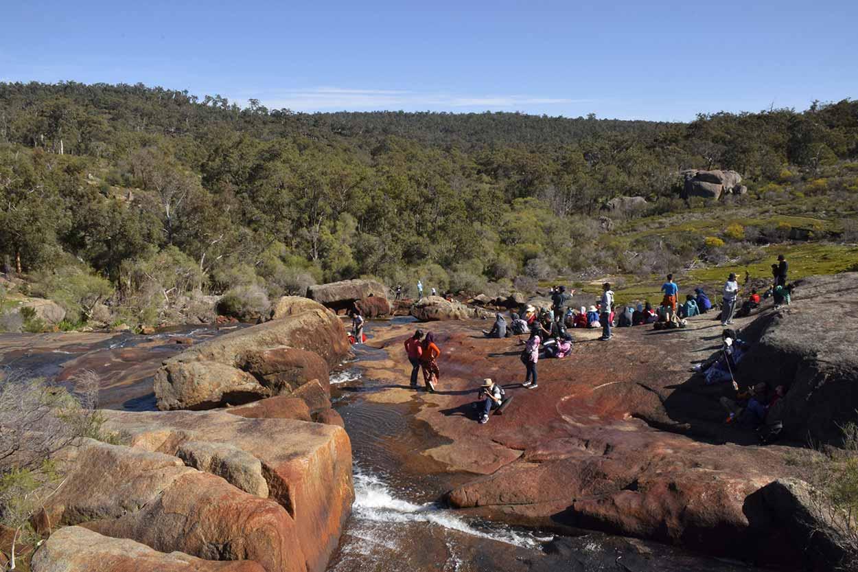 Hovea Falls, John Forrest National Park, Perth, Western Australia