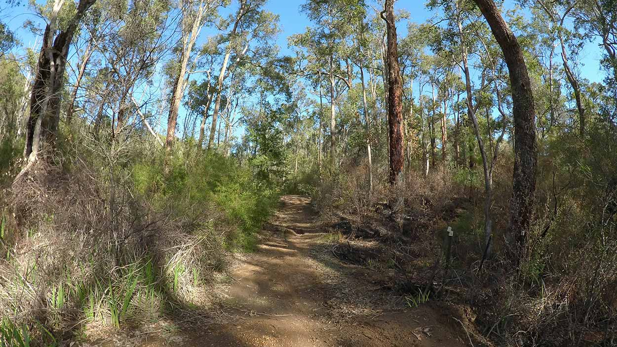 Hiking the Kattamordo Heritage Trail, Perth, Western Australia