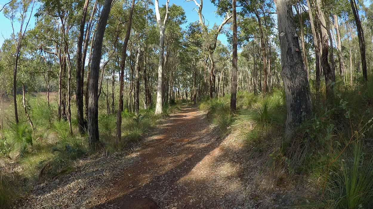 Carmel Walk Trail, Perth, Western Australia