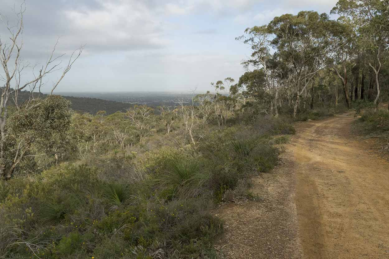 Bushland views, Korung National Park, Perth, Western Australia