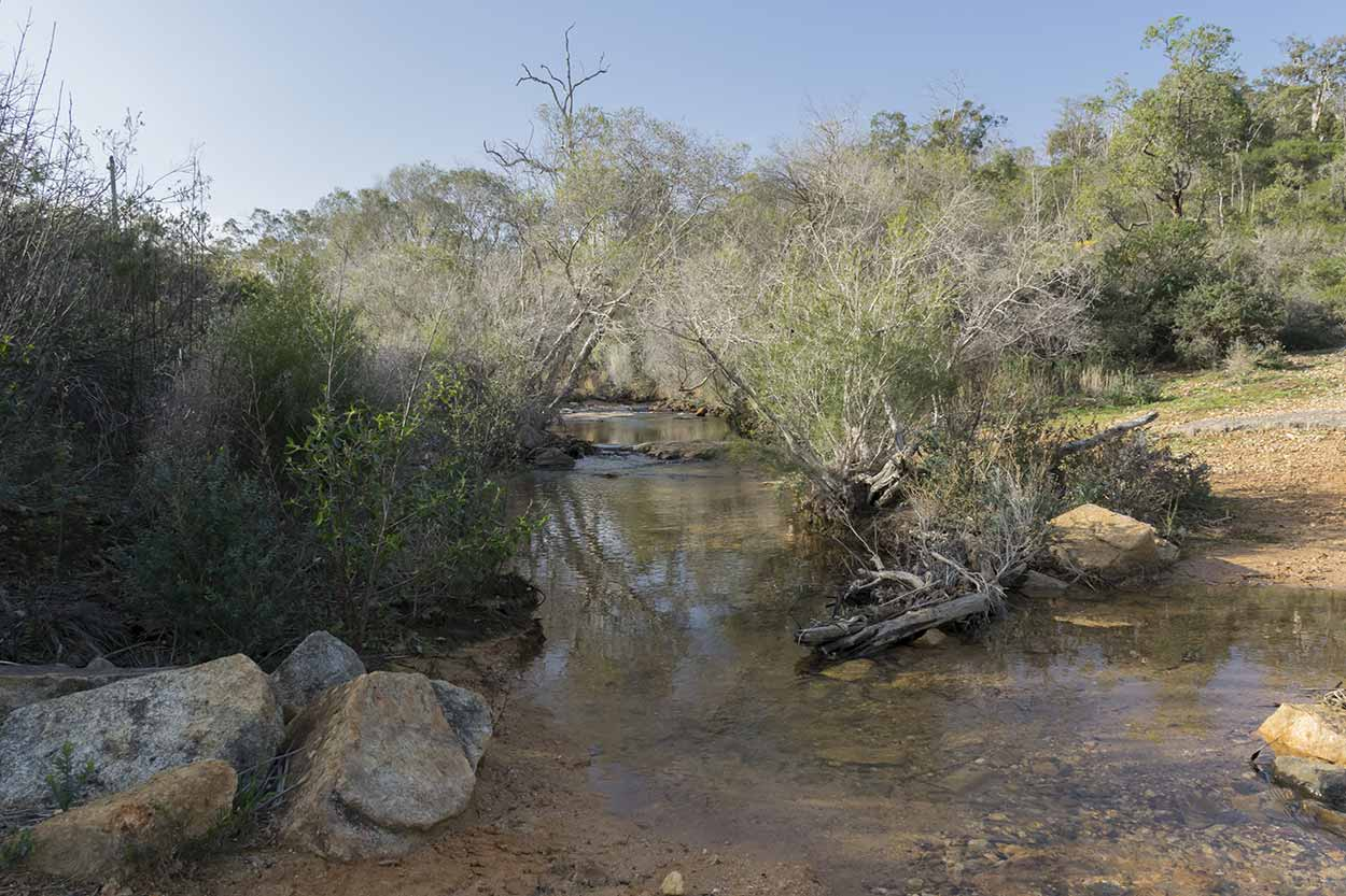 A babbling brook, Korung National Park, Perth, Western Australia