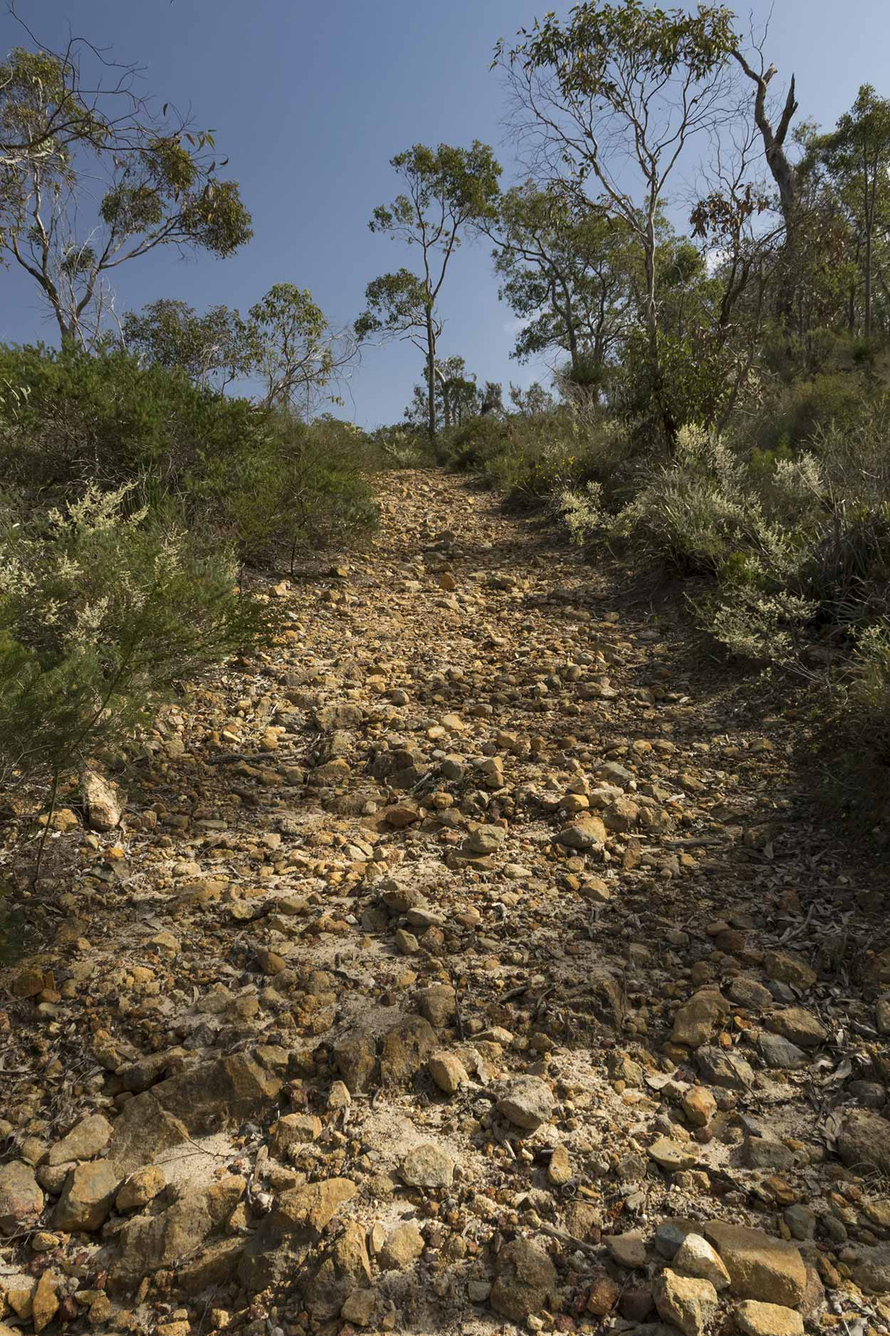 The Bickley Reservoir Walk trail, Korung National Park, Perth, Western Australia