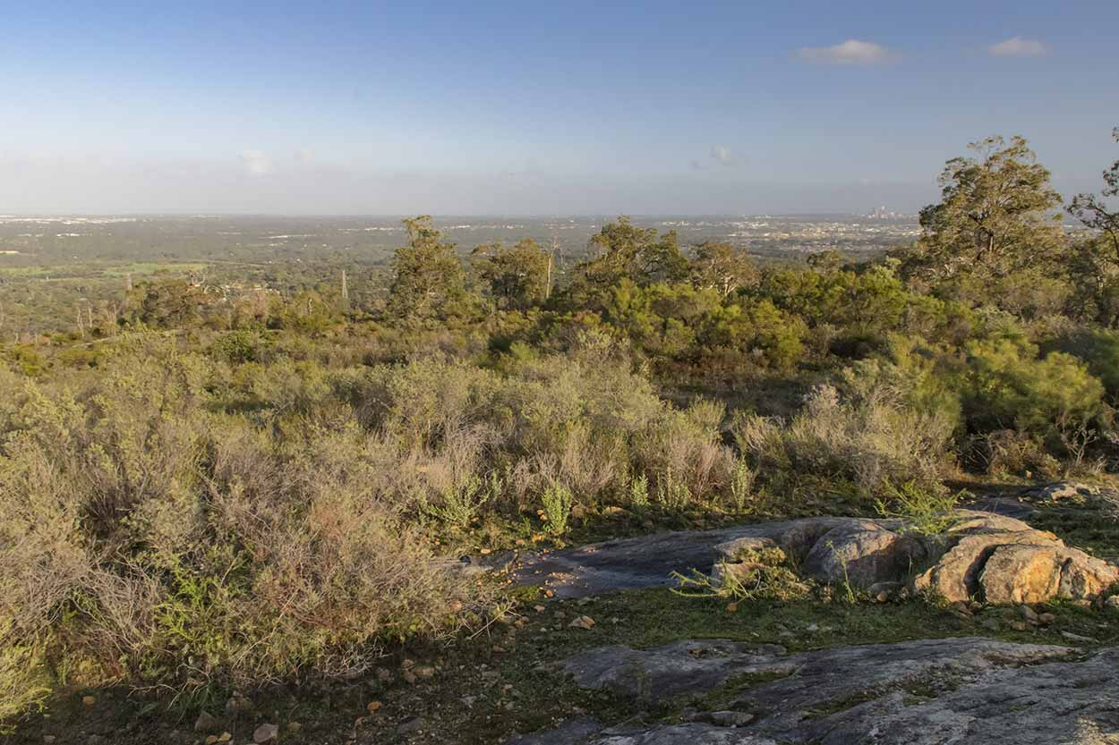 Early morning over the Swan Coastal Plain, Lion's Lookout, Perth, Western Australia