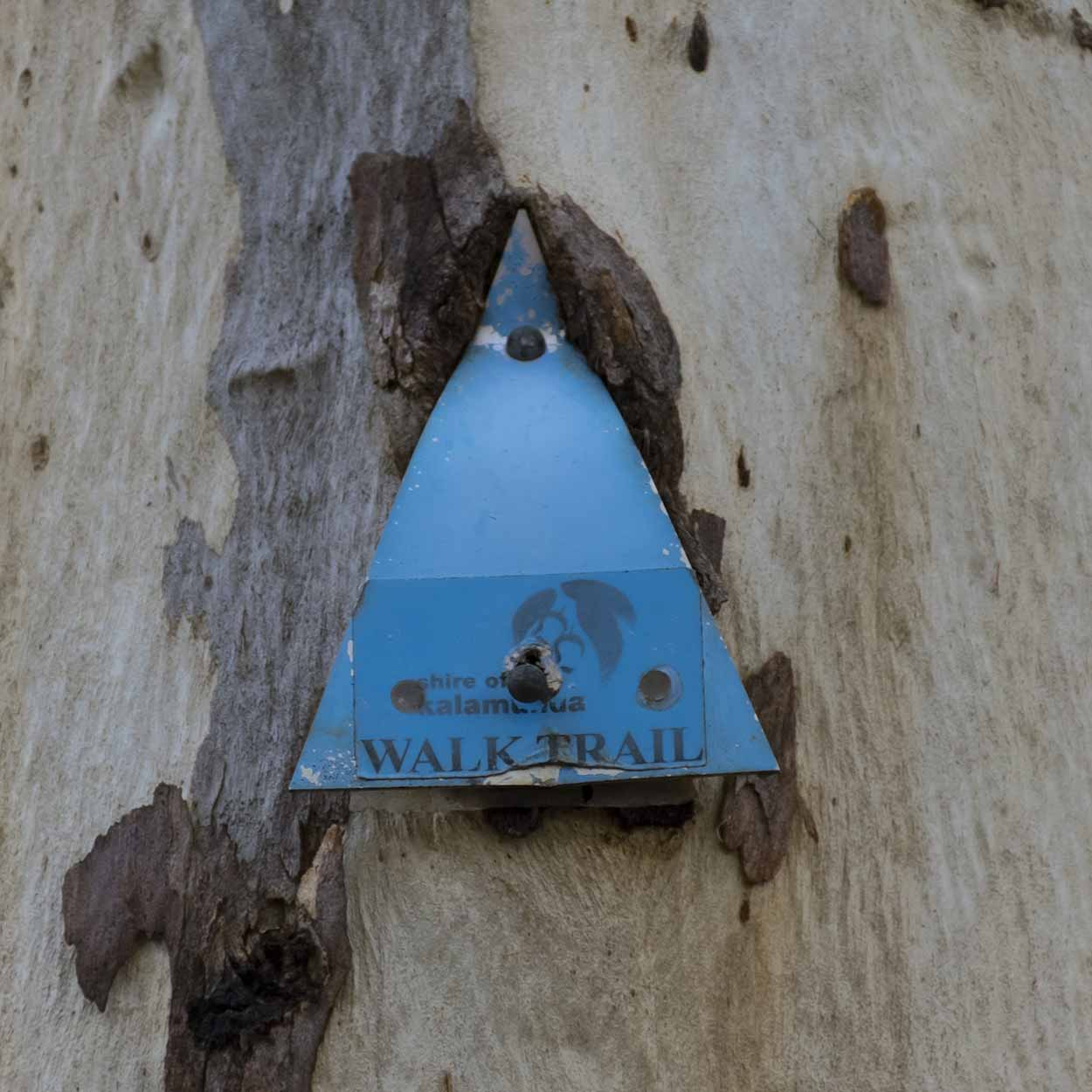Trail marker for the Lion's Lookout Walk, Lion's Lookout, Perth, Western Australia