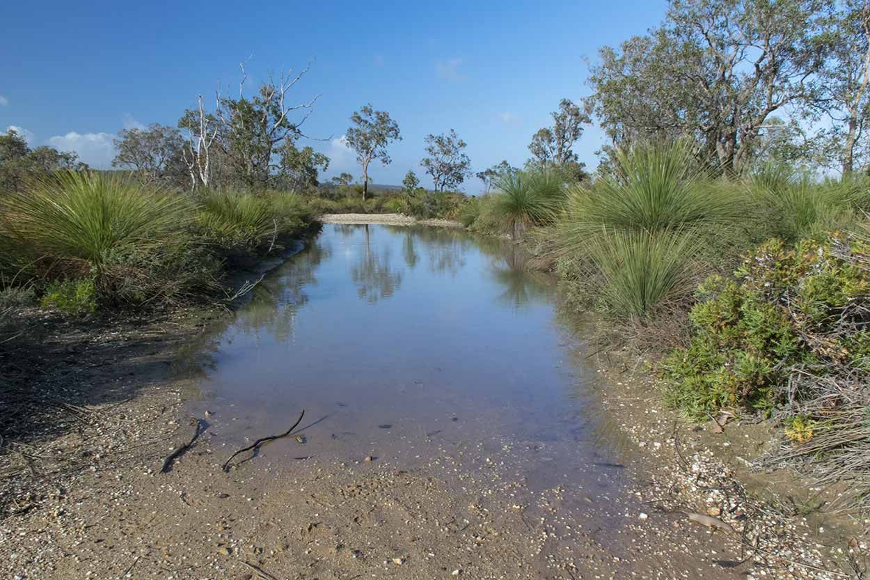 A large puddle on the path, Lion's Lookout, Perth, Western Australia