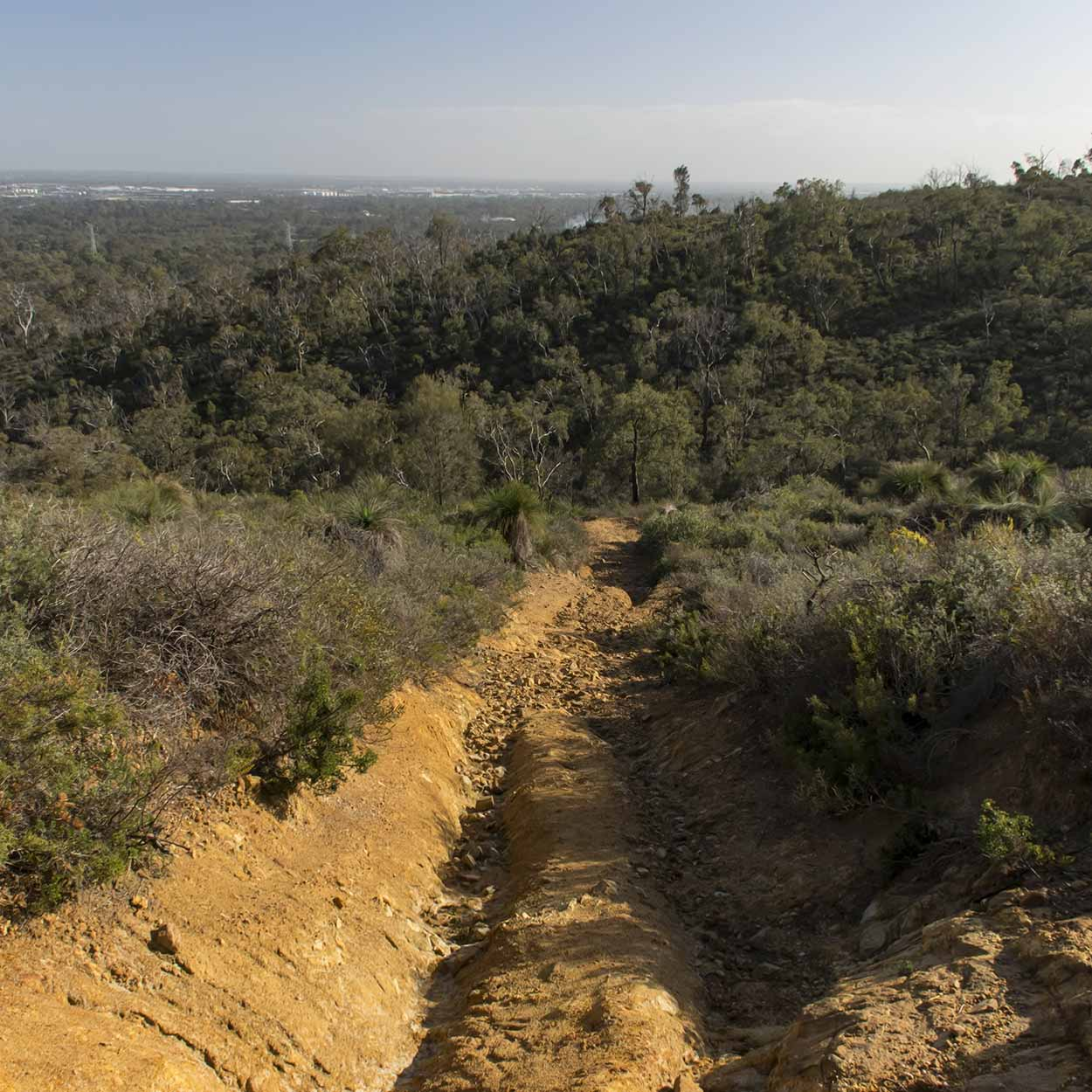 Eroded path, Lion's Lookout, Perth, Western Australia