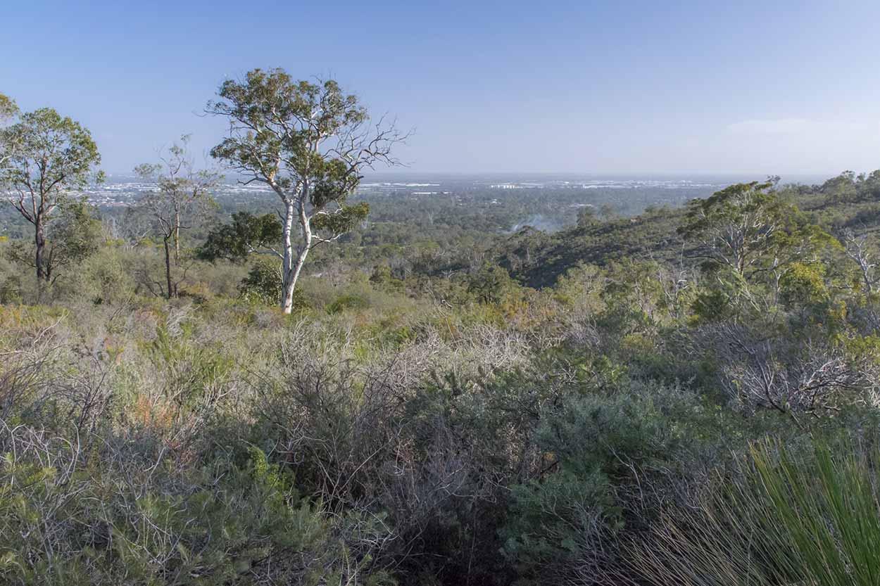 Views over the Swan Coastal Plain, Lion's Lookout, Perth, Western Australia
