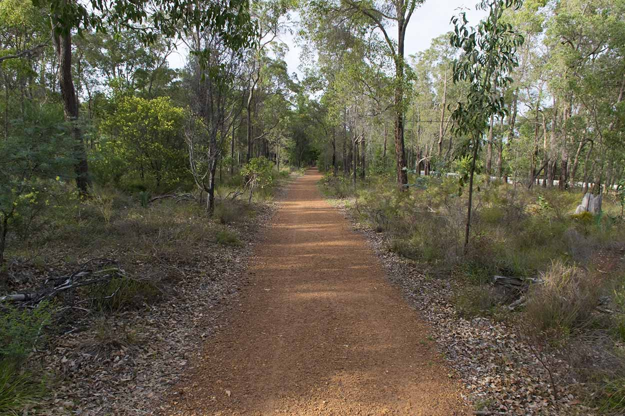 Walking the Munda Biddi Trail, Mundaring, Perth, Western Australia