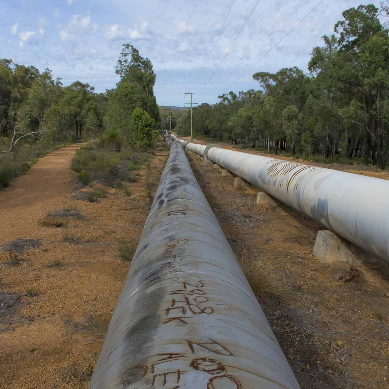 Walking the pipe rope along the Munda Biddi Trail, Mundaring, Perth, Western Australia