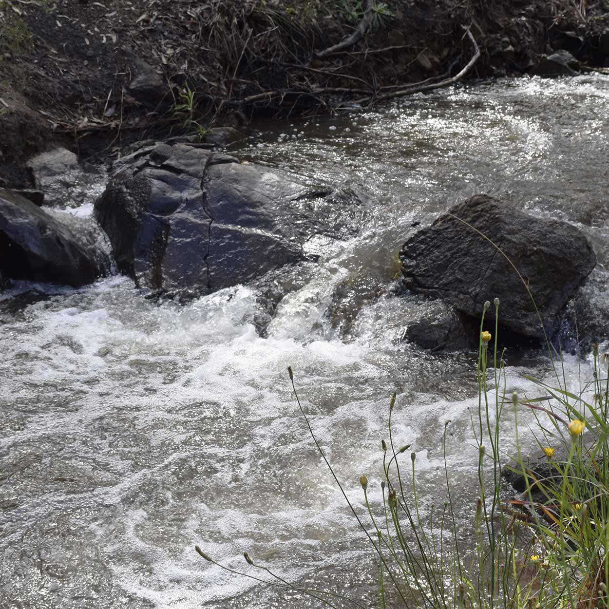 A flowing Lesmurdie Brook, Mundy Regional Park, Perth, Western Australia