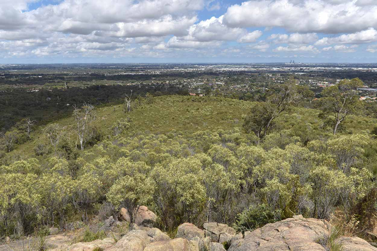 Great views along the northern section of the Valley Loop Trail, Mundy Regional Park, Perth, Western Australia