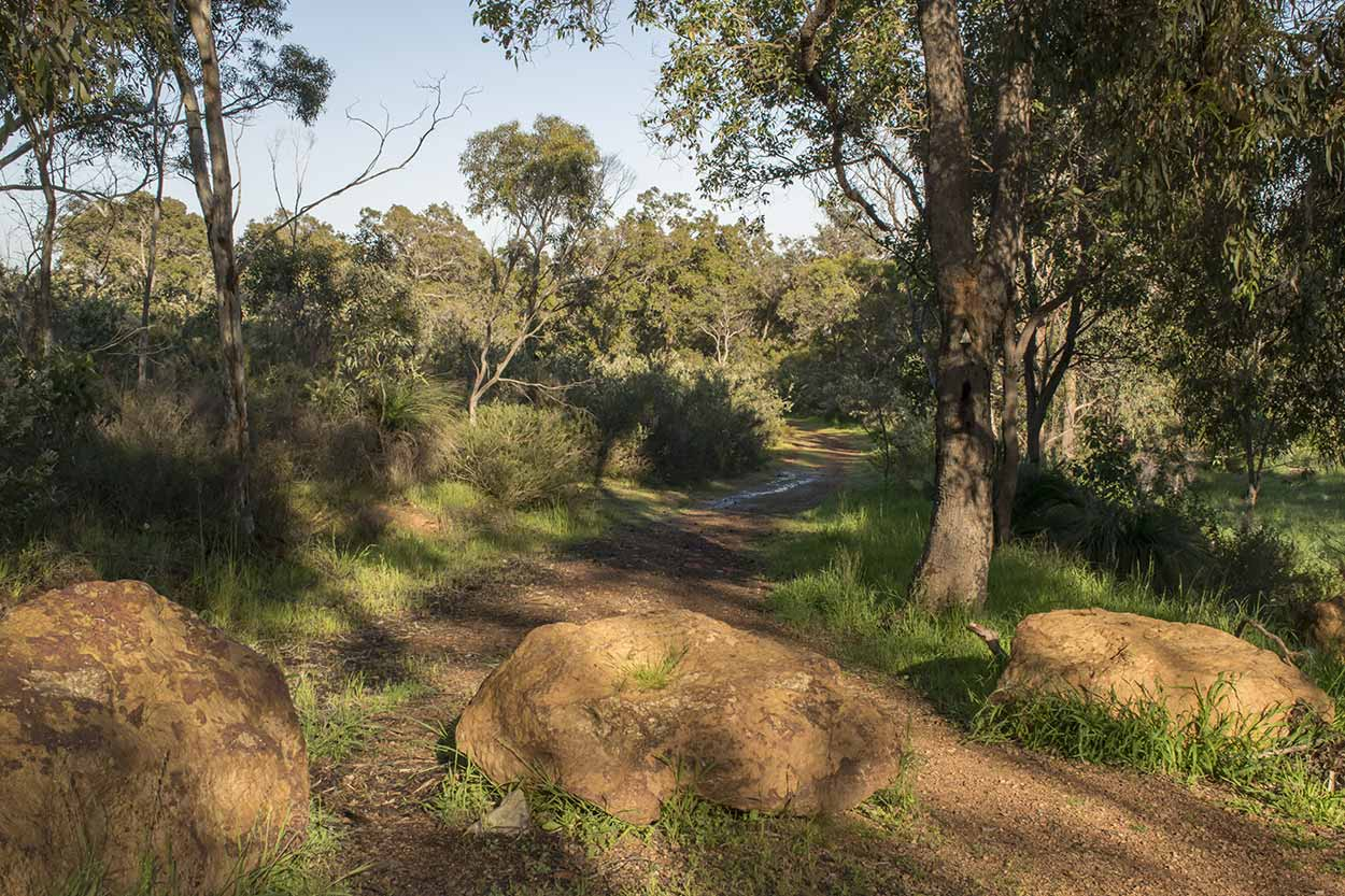 Palm Terrace Walk, Mundy Regional Park, Perth, Western Australia