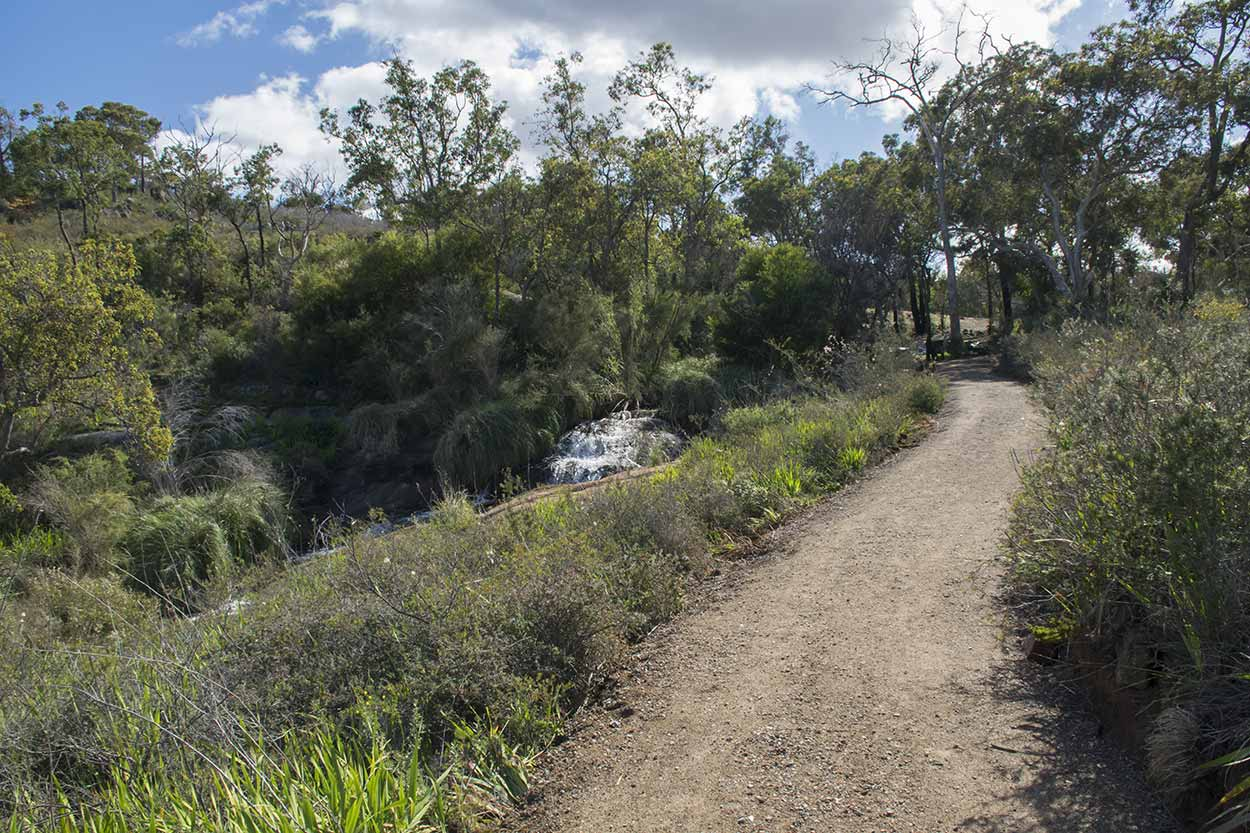 Improved path for the the Palm Terrace Walk, Mundy Regional Park, Perth, Western Australia