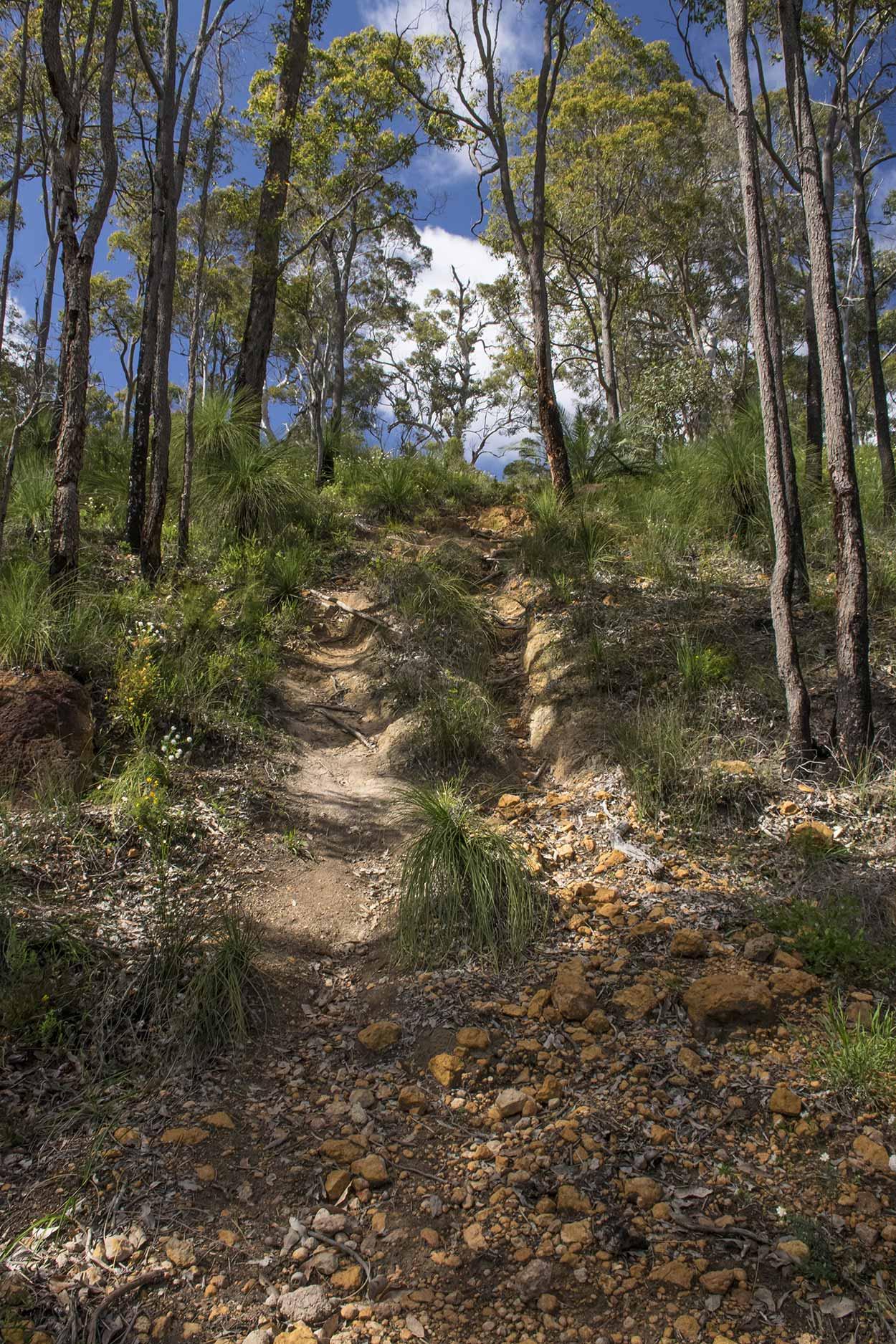 A steep rocky track on the Palm Terrace Walk, Mundy Regional Park, Perth, Western Australia