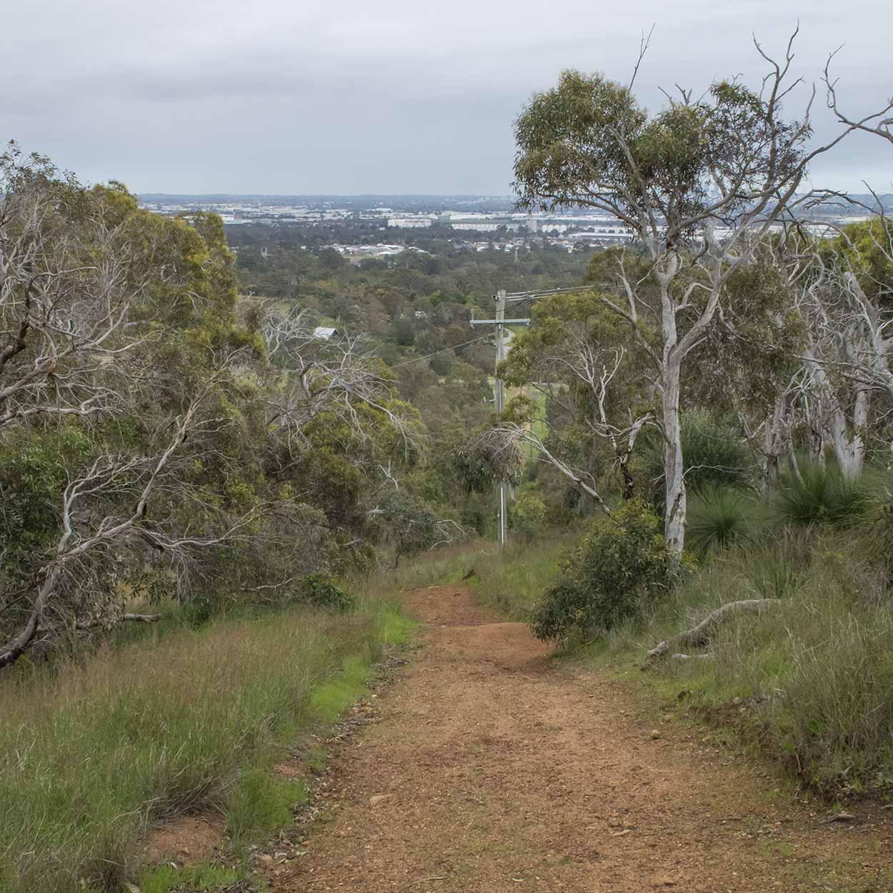 Downhill on the West Terrace Walk, Mundy Regional Park, Perth, Western Australia