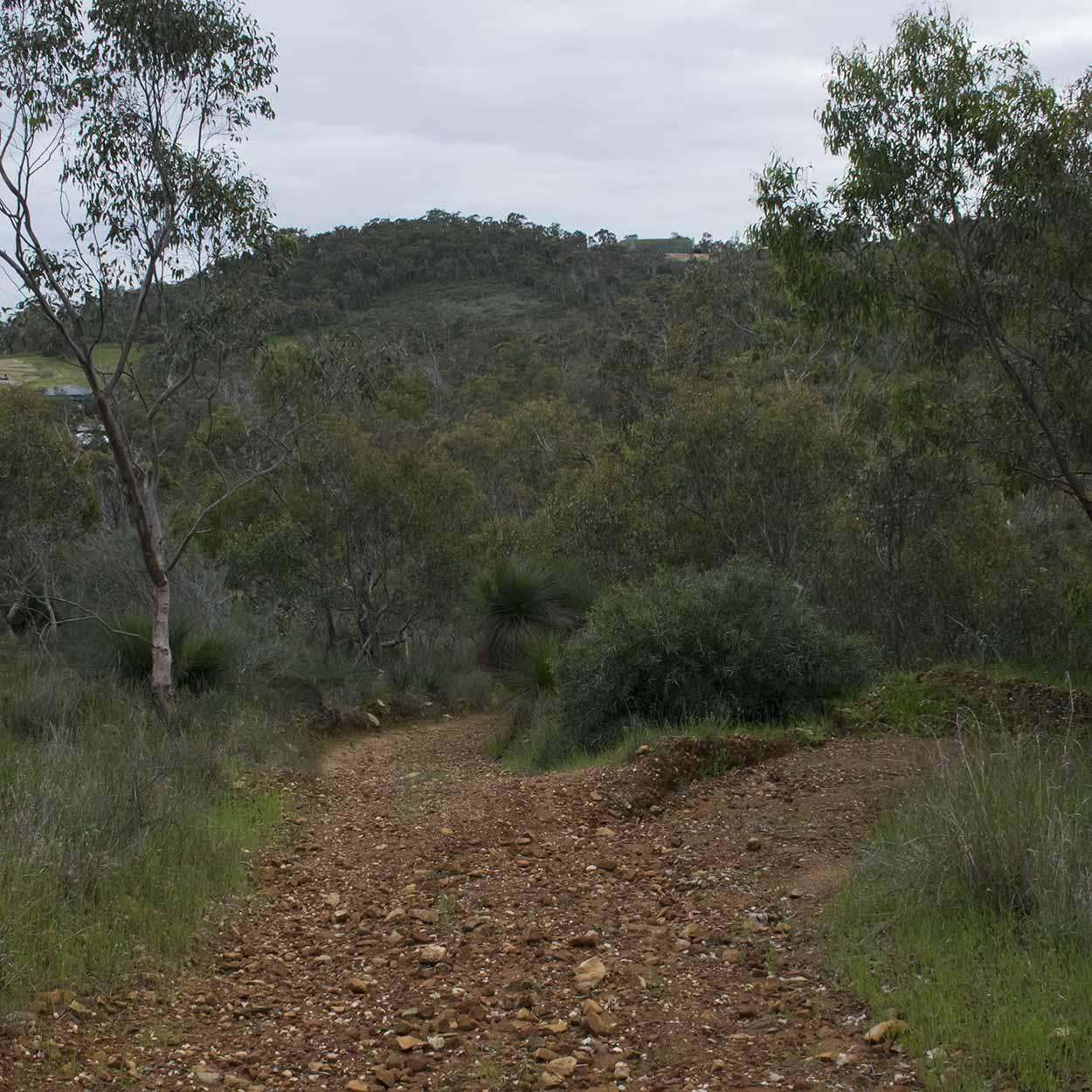 A rocky uphill path on the West Terrace Walk, Mundy Regional Park, Perth, Western Australia