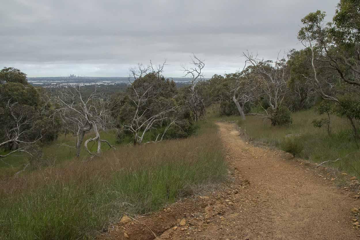 A morning stroll on the West Terrace Walk, Mundy Regional Park, Perth, Western Australia