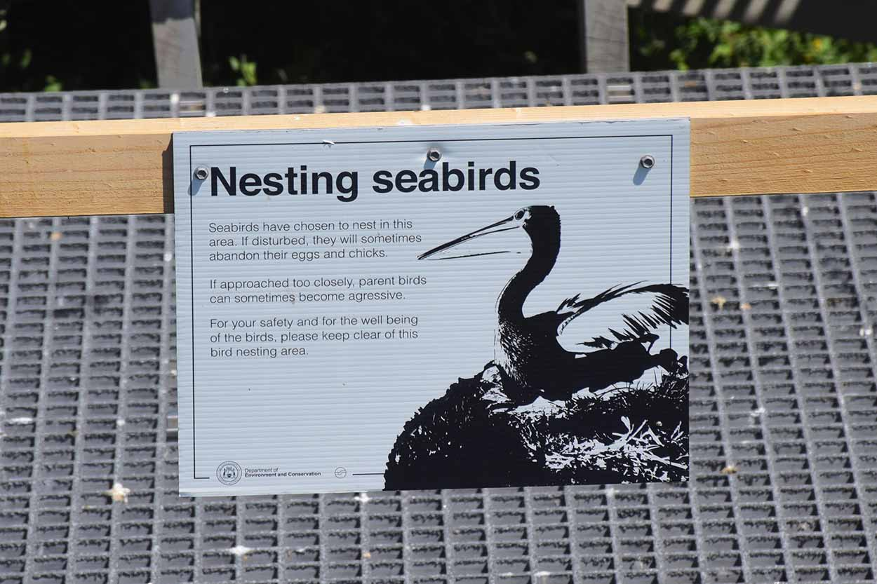 Sign for nesting Pelicans, Penguin Island, Perth, Western Australia