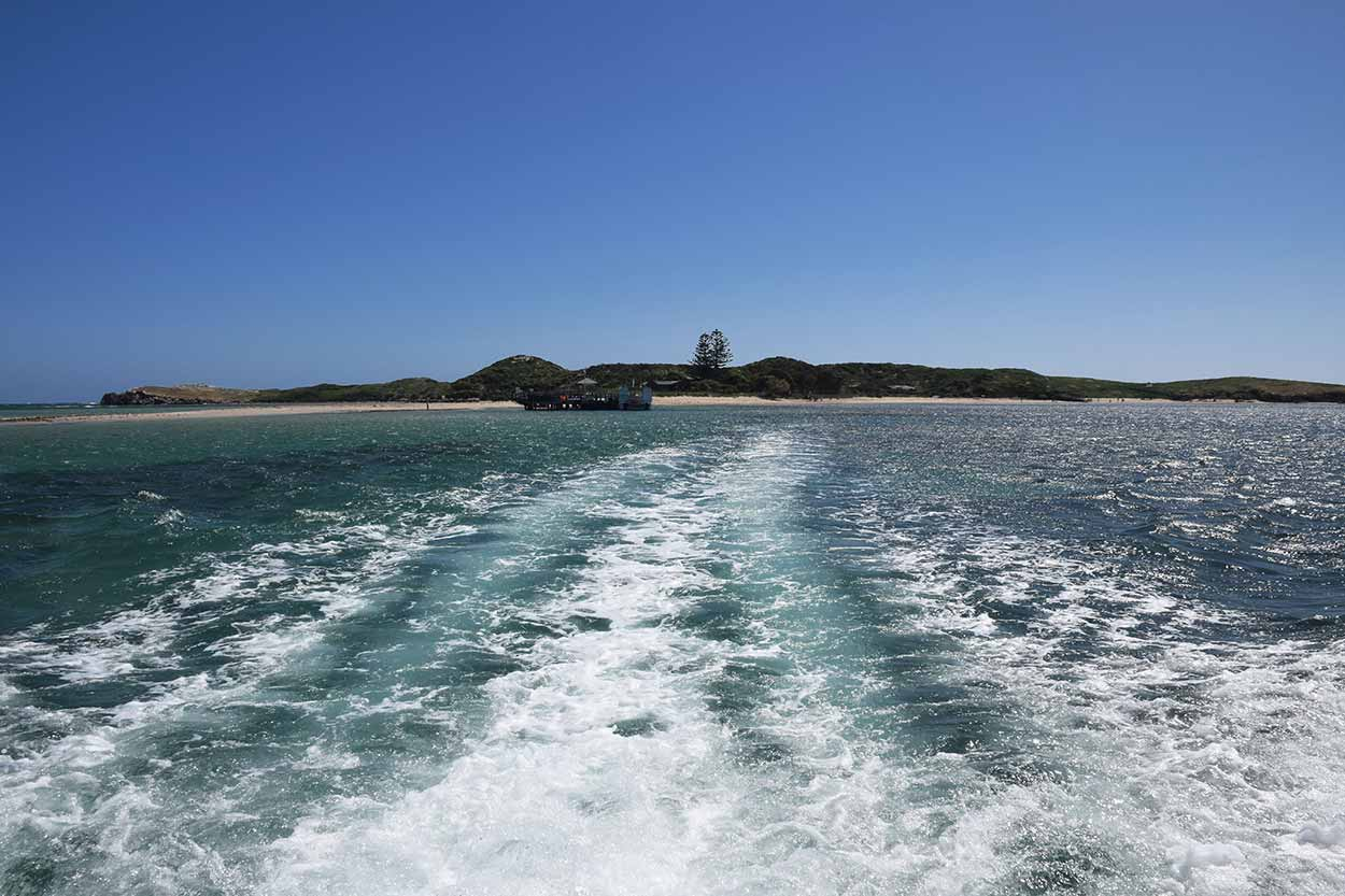 Returning back to the mainland by boat, Penguin Island, Perth, Western Australia