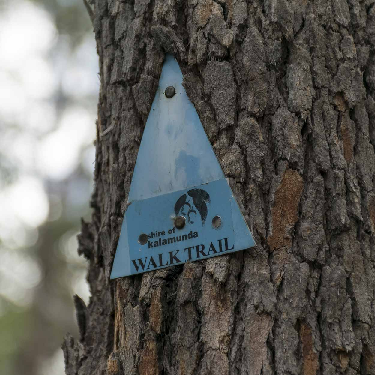 Trail marker for the Rocky Pool Walk, Kalamunda National Park, Perth, Western Australia