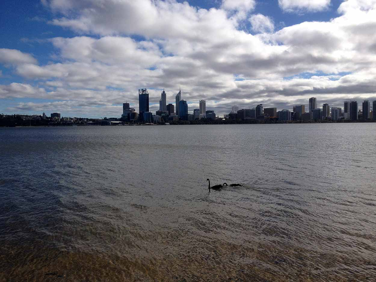 The view of the Perth CDB over the Swan River from Sir James Mitchell Park, South Perth,  Perth, Western Australia
