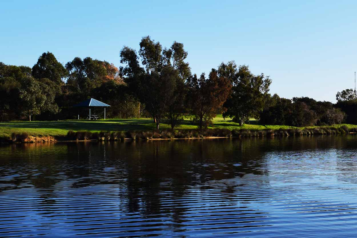 Black Swan Island viewed from the Bristile Park bank of the Swan River, Perth, Western Australia