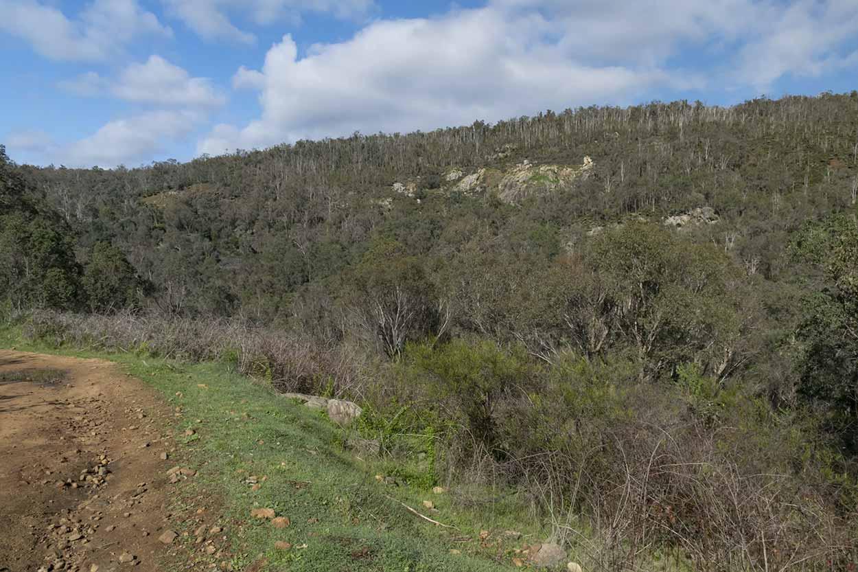 Wungong Gorge, Wungong Regional Park, Perth, Western Australia