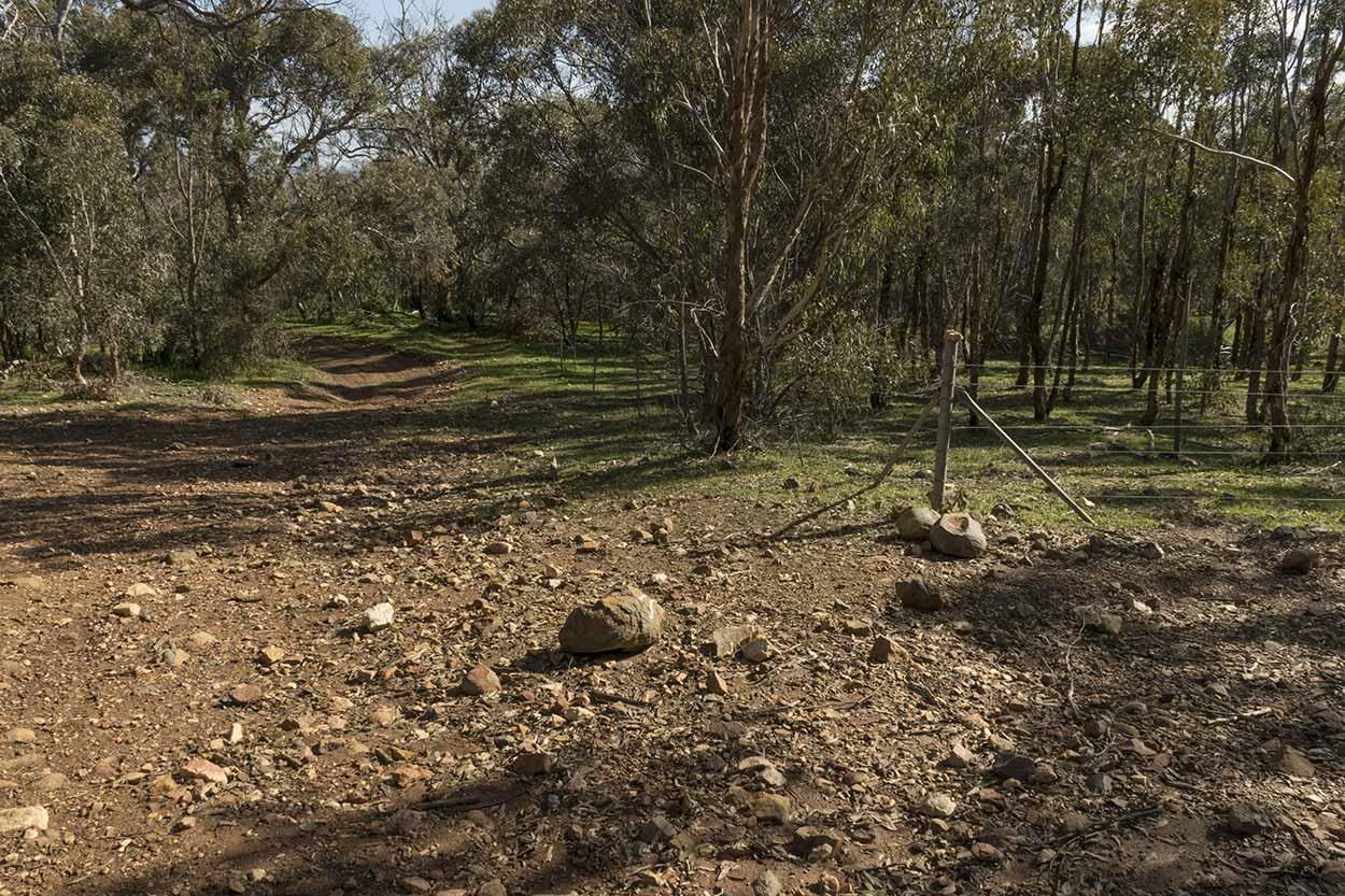 Rocky path in Wungong Regional Park, Perth, Western Australia