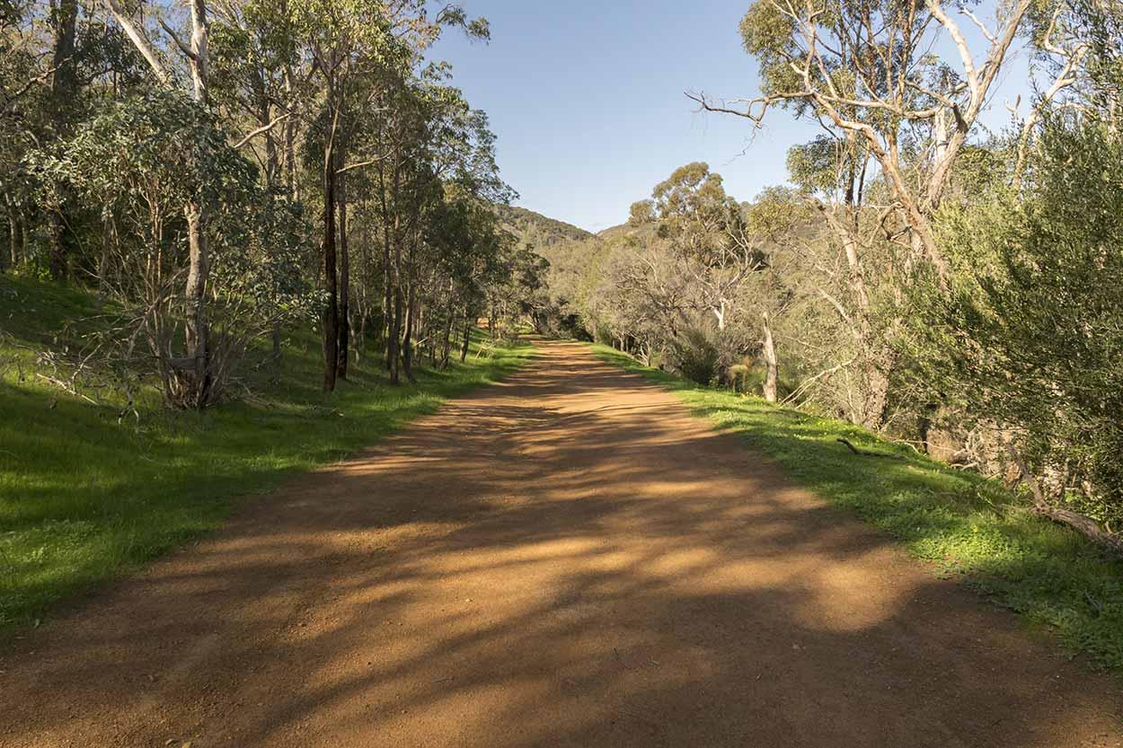 Flat path in Wungong Regional Park,  Perth, Western Australia
